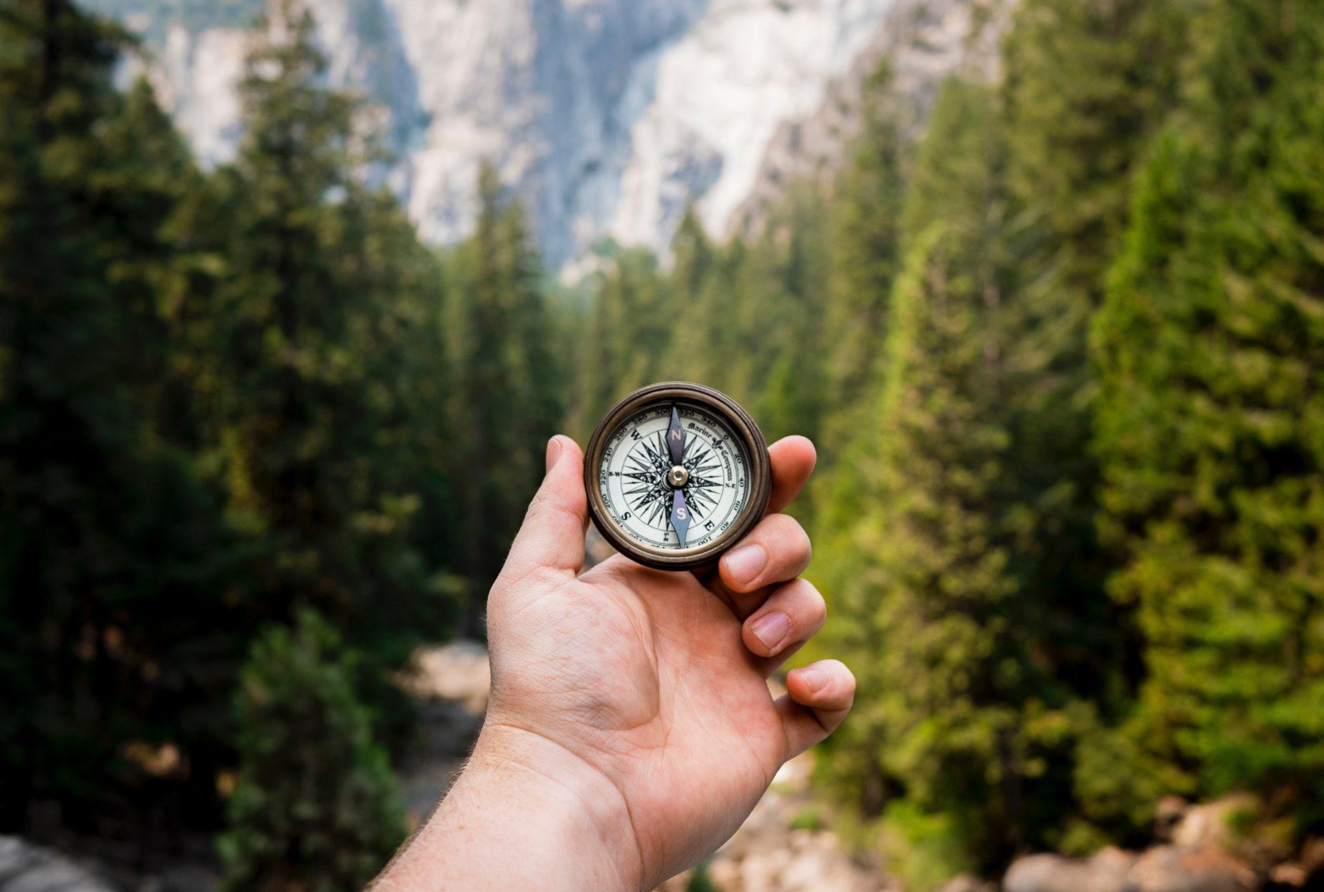 Kompass im Wald